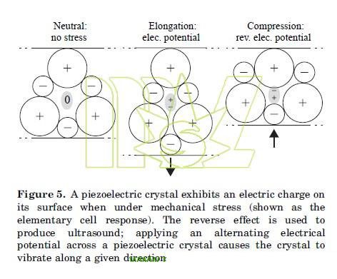 piezoelectric crystal exhibits