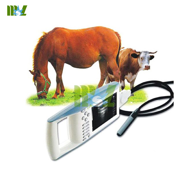 ultrasound machine for animals