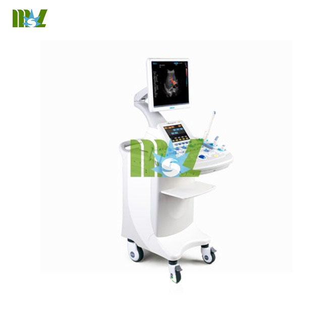 4D color doppler ultrasound system
