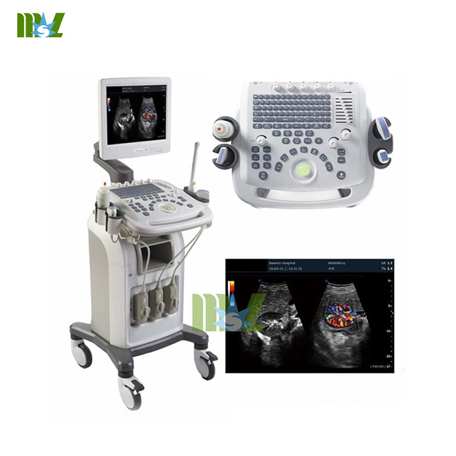 3D Color cardiac ultrasound machine / 4D Color cardiac USG with trolly MSLCU16